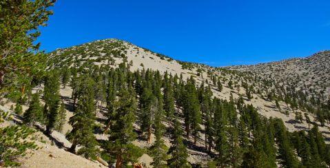 San Gorgonio hike, San G hike, View of San Jacinto, Sunday, gorgeous hike, blue skies