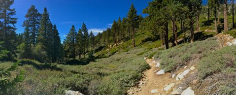 San Gorgonio hike, San G hike, Sunday, gorgeous hike, blue skies